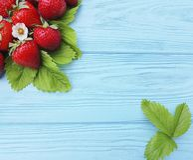 Fresh organic strawberry leaf farming summer harvest on a blue wooden background. Fresh strawberry whole organic blue wooden background harvest summer farming royalty free stock images
