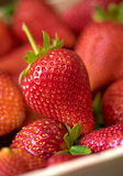 Fresh strawberry in wooden box. Close up view.  Stock Image