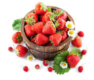 Fresh strawberry in wooden bucket with green leaf and flower Stock Images