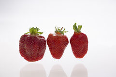 Fresh strawberryes. On white Stock Photography