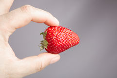 Fresh strawbery Royalty Free Stock Photo