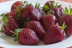 Fresh straweberries on display Royalty Free Stock Photos