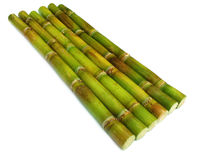 Fresh sugar cane Stock Photography
