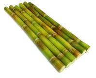 Fresh sugar cane. Over white background Stock Photography