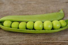 Fresh sugar snap peas Stock Images