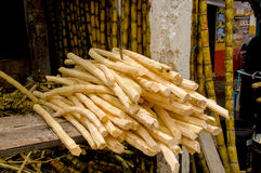Fresh sugarcane sticks recently peeled with machete stabbed into top of pile stock photography
