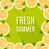 Fresh Summer Background with Citrus Lemon Fruits. Design Element for Greeting Cards, Invitations, Announsements, Adverticements, V Royalty Free Stock Photos