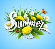 Fresh summer background with grass, dandelions and Stock Image