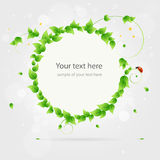 Fresh summer banner sticker template Stock Photography