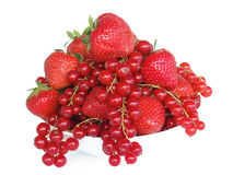 Strawberries and red currants Stock Photography