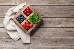 Fresh summer berries box Stock Image