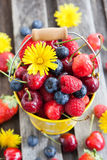 Fresh summer berries in a bucket. Fresh cherry, strawberry, blueberry and raspberry in a bucket on wooden table Royalty Free Stock Photography