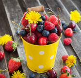 Fresh summer berries in a bucket. Fresh cherry, strawberry, blueberry and raspberry in a bucket on wooden table Stock Image