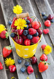Fresh summer berries in a bucket. Fresh cherry, strawberry, blueberry and raspberry in a bucket on wooden table Royalty Free Stock Photo