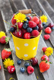 Fresh summer berries in a bucket. Fresh cherry, strawberry, blueberry and raspberry in a bucket on wooden table Stock Images