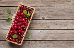 Fresh summer cherry. Fresh summer berries. Cherry. Top view with space for your text royalty free stock images