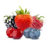 Fresh Summer Berries Stock Photo