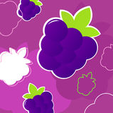 Fresh summer blackberry fruit retro background Royalty Free Stock Image