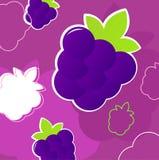 Fresh summer blackberry fruit retro background Royalty Free Stock Image