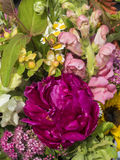 Fresh Summer Bouquet Royalty Free Stock Images