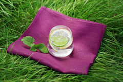 Fresh summer drink. With lime and lemon on the grass, mint leafs next to glass Stock Photo