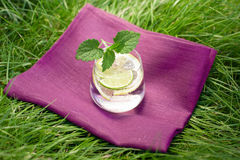 Fresh summer drink. With lime and lemon on the grass, mint leafs next to glass Royalty Free Stock Photography