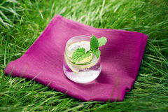 Fresh summer drink. With lime, lemon and mint on the grass Royalty Free Stock Image