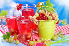 Fresh summer fruit compote Stock Image