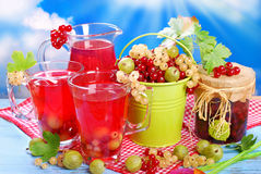 Fresh summer fruit compote Stock Photography