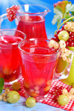Fresh summer fruit compote Royalty Free Stock Image