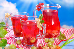 Fresh summer fruit compote Royalty Free Stock Photos