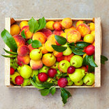 Fresh summer fruit in crate Royalty Free Stock Photos
