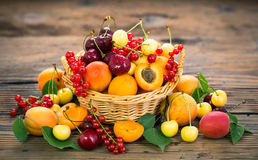 Fresh summer fruits. In the basket Stock Images