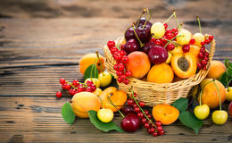 Fresh summer fruits. In the basket Royalty Free Stock Photos