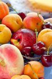 Fresh summer fruits. Cherries and  peaches, apricots and nectarines Stock Images