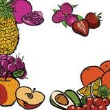 Fresh Summer Fruits in Circle Royalty Free Stock Photo