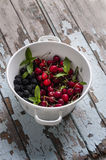 Fresh summer fruits in a colander. Fresh summer fruits mix in a colander Royalty Free Stock Photography