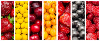 Fresh Summer Fruits Collage. Fresh Healthy Summer Fruits Collection Collage Set stock photos
