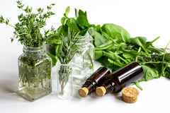 Fresh summer herbs - aromatherapy at white background. Close up Stock Photos