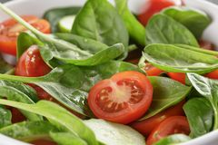 Fresh summer organic salad with tomatoes cucumbers Stock Photos