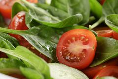 Fresh summer organic salad with tomatoes cucumbers Stock Image