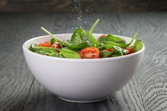 Fresh summer organic salad with tomatoes cucumbers Royalty Free Stock Photos