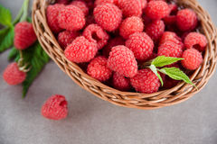 Fresh summer raspberry in a basket. Selective focus. Fresh summer raspberry in the basket. Selective focus Stock Images