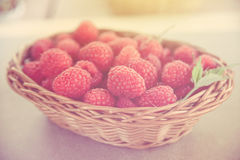 Fresh summer raspberry in a basket. Selective focus. Fresh summer raspberry in the basket. Selective focus Royalty Free Stock Photos