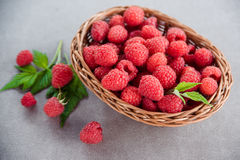Fresh summer raspberry in a basket. Selective focus. Fresh summer raspberry in the basket. Selective focus Royalty Free Stock Image