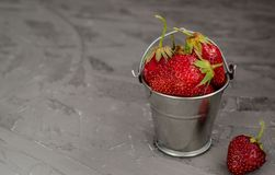 Fresh summer ripe strawberries in a small bucket on a gray concrete background. Lit by the bright sun. Gray background stock photos