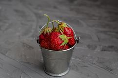Fresh summer ripe strawberries in a small bucket on a gray concrete background. Lit by the bright sun. Gray background royalty free stock photo