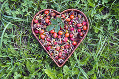 Fresh summer rose hips in heart form wicker basket Stock Photos