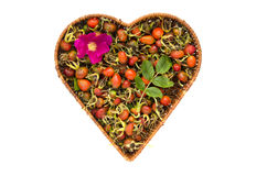 Fresh summer rose hips in heart form wicker basket isolated Stock Images