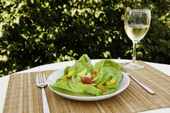 Fresh Summer Salad Royalty Free Stock Image